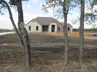 401 George Road, Howe, TX 75459 - #: 14228954