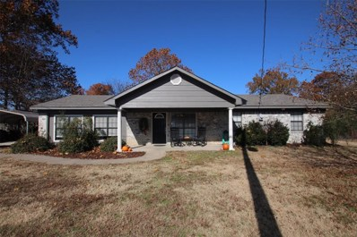 399 Rs County Road 3425, Emory, TX 75440 - #: 14232933