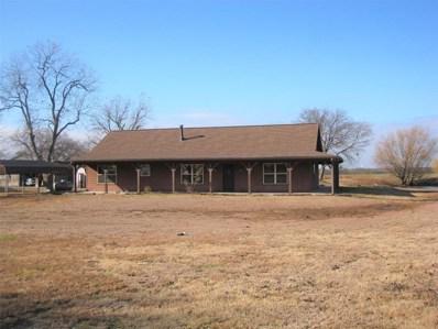 1668 Cr 2730, Farmersville, TX 75442 - #: 14233132