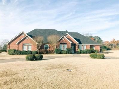 407 Briarwood Court, Sulphur Springs, TX 75482 - #: 14233252