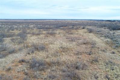County Road 462, Paducah, TX 79252 - #: 14241080