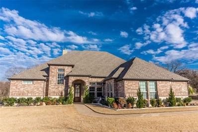 1090 Stone Trail Lane, Cross Roads, TX 76227 - #: 14241507