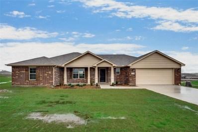 123 Pasture Lane, Decatur, TX 76234 - #: 14246498