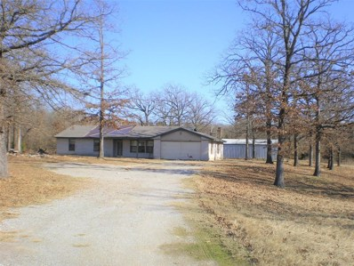 11437 Mt. Carmel Road, Caddo, OK 74729 - #: 14254867