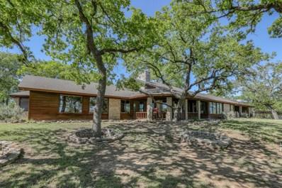 1799 S Fm 113, Millsap, TX 76066 - #: 14255437