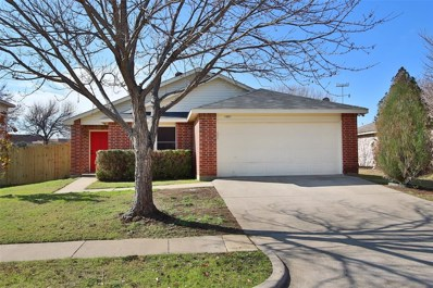 1002 Mazourka Drive, Arlington, TX 76001 - #: 14256750