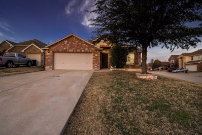 3917 Yarberry Court, Fort Worth, TX 76262 - #: 14260194