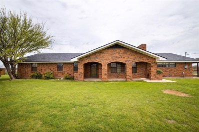 209 County Road 217, Sweetwater, TX 79556 - #: 14313507