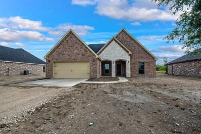 11655 County Road 313, Terrell, TX 75161 - #: 14400124