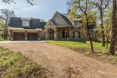 290 Norman Drive, Millsap, TX 76066 - #: 14441072