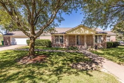 304 W Waco Street, Abbott, TX 76621 - #: 14445110