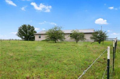3847 County Road 15100, Blossom, TX 75416 - #: 14576654
