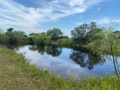 4102 County Road 295, Carbon, TX 76435 - #: 14603901