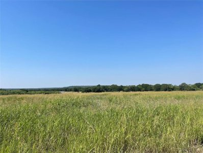 8501 Highway 279, Brownwood, TX 76801 - #: 14606668