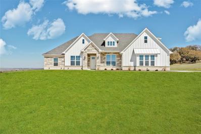 381 Oak Meadow Lane, Weatherford, TX 76085 - #: 14632669
