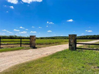 1001 Cool Ranch Lane, Millsap, TX 76066 - #: 14657463