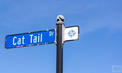 26441 Cat Tail Drive, Galveston, TX 77554 - #: 20192174
