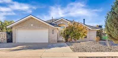 14012 Desert Lily, Horizon City, TX 79928 - #: 757860