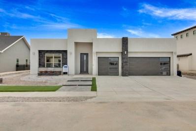 978 Selway River Place, El Paso, TX 79932 - #: 808191