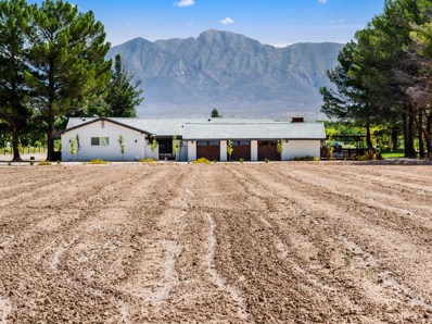 1300 S Highway 28, Anthony, NM 88021 - #: 834911