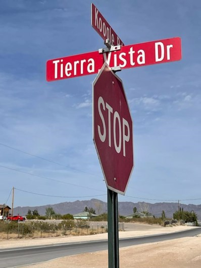 280 N. Tierra Vista Drive, Anthony, NM 88021 - #: 845299
