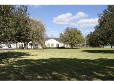 1220 N Lion Lake Drive, Weslaco, TX 78596 - #: 193476