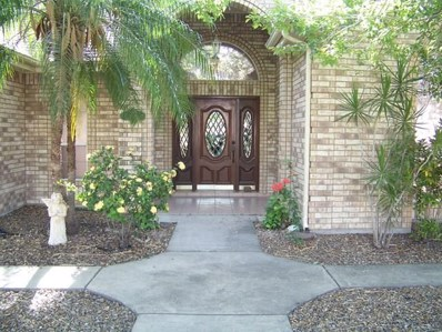 824 Lucy Drive, Alamo, TX 78516 - #: 210850