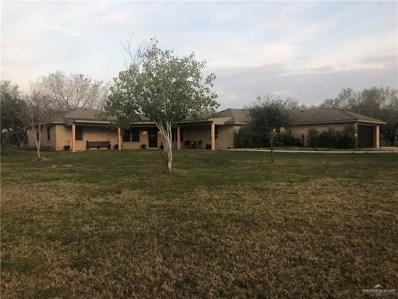 4020 N Bryan Road, Palmhurst, TX 78573 - #: 218876