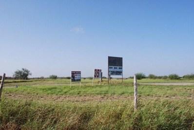 00 Expressway 83, La Grulla, TX 78548 - #: 219621