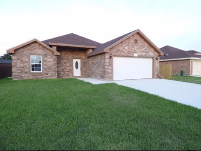 3312 Huron Drive, Weslaco, TX 78599 - #: 220326