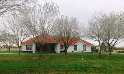 1505 N Sugar Road, Edinburg, TX 78541 - #: 220614