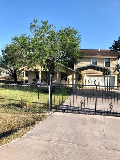 859 W Roosevelt Road, Donna, TX 78537 - #: 221350