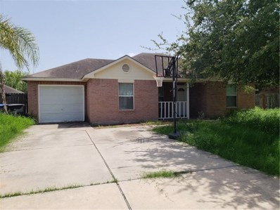3113 NW Providence Avenue NW, McAllen, TX 78504 - #: 300634