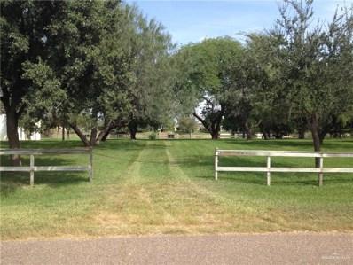 1261 S Lion Lake Drive, Progreso Lakes, TX 78596 - #: 311832