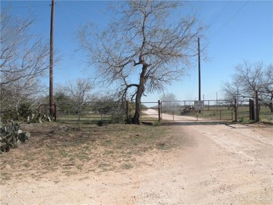 0 Energy Road, San Isidro, TX 78536 - #: 315367