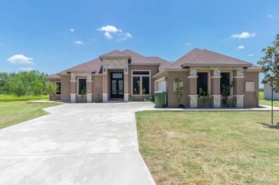 1025 River Bend Drive, Rio Grande City, TX 78582 - #: 319155