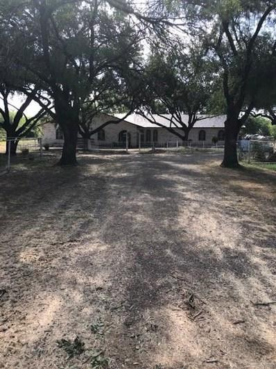 Tbd Depot Road, McAllen, TX 78541 - #: 319288