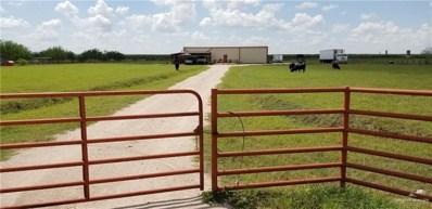 561 Lion Lake Drive N, Weslaco, TX 78596 - #: 321051