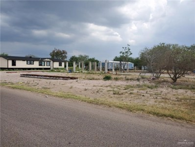 7928 NW Brushline Road NW, Mission, TX 78574 - #: 333420