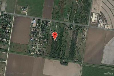 0 Fm 2812, Monte Alto, TX 78538 - #: 341919