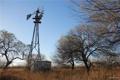 00 N Alaniz Road, La Gloria, TX 78591 - #: 348911
