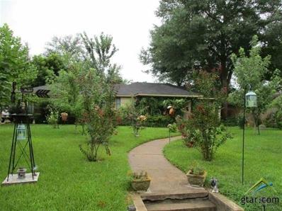 312 McNee, Henderson, TX 75654 - #: 10085027
