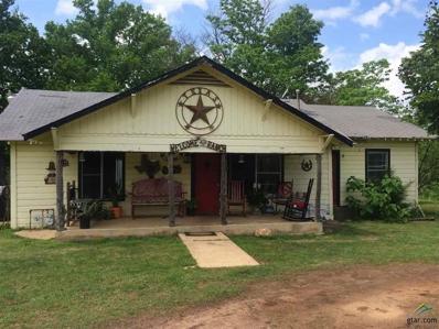 10046 Fm 314, Brownsboro, TX 75756 - #: 10098814