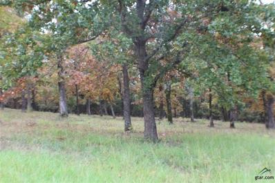 124 Lake Lou Ella Dr., Bullard, TX 75757 - #: 10101430