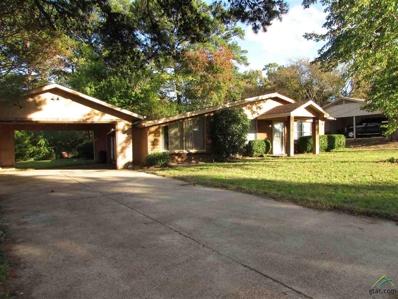 10423 Creek Bend Dr, Tyler, TX 75707 - #: 10101515