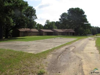 1000 N Warren, Overton, TX 75684 - #: 10111638