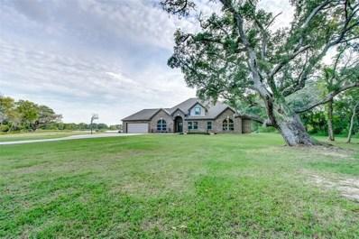 21810 Chenango Lake Drive, Angleton, TX 77515 - #: 10131704