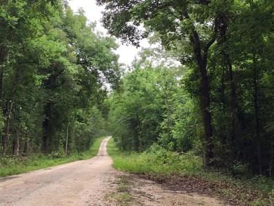 181 Ac Harrell Road, Coldspring, TX 77331 - #: 10231848