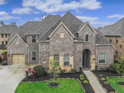 17116 Spirit Lake Lane, Houston, TX 77044 - #: 10674234