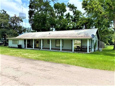 219 Davison Street, Newton, TX 75966 - #: 10906089